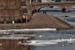 На Неве – последние льдины и первые загорающие: Фоторепортаж