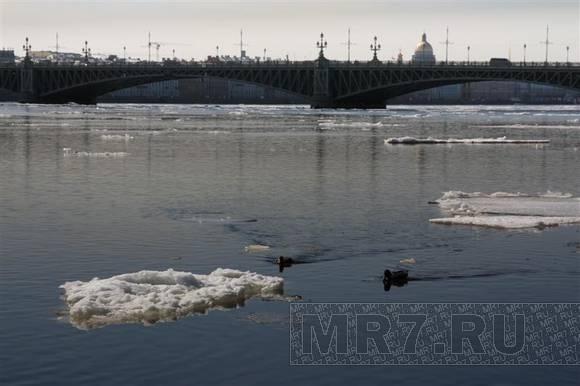 На Неве – последние льдины и первые загорающие: Фото