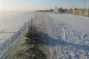 «Боливара» задержали льды Финского залива