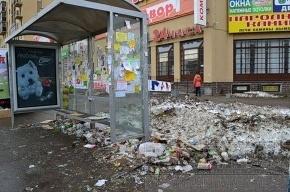 Возле станции метро «Проспект Просвещения» по-прежнему грязно