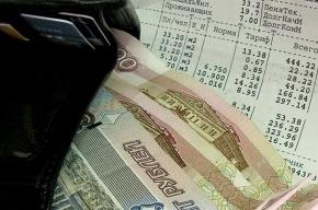 Петербурженка заплатит коммунальные платежи за 1050 мигрантов