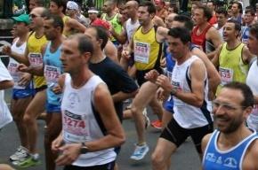 К Олимпиаде-2012 готовятся 179 петербургских спортсменов