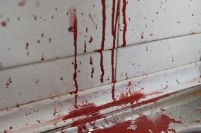 Преступники ранили ножом семейную пару, требуя документы на квартиру