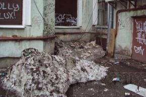 Двор на улице Чайковского никогда не видел дворника