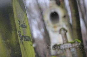 В Гатчине осквернили городское кладбище