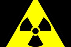 Во Владивостоке задержана партия радиоактивных иномарок из Японии