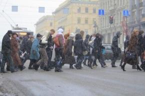 По итогам переписи в Петербурге 4 млн 849 тыс жителей