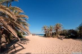 Пальмовый пляж Ваи: райское место