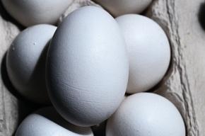 В президента Германии швырнули яйцо
