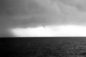 Число жертв циклона в США возросло до 45 человек