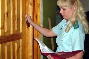 У петербуржца арестовали оружейный арсенал в счет оплаты алиментов