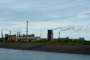 На заводе «Фосфорит» в Кингисеппе произошел выброс газа
