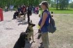 В лесопарке на улице Бутлерова прошел собачий праздник: Фоторепортаж