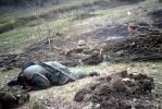 Полежаевский парк сыграл роль Зееловских высот: Фоторепортаж