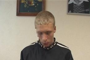 В Ленобласти подросток зарезал 11-летнюю девочку сувенирным клинком