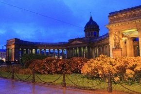 Дорожки у Казанского собора выложили малиновым асфальтом