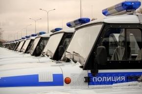 В городе появились первые машины с надписью «полиция»