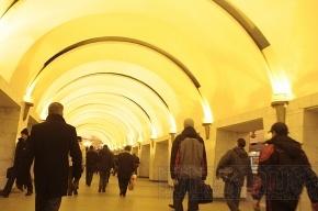 Причиной сбоя на «синей ветке» метро стали двое пассажиров, упавших на рельсы