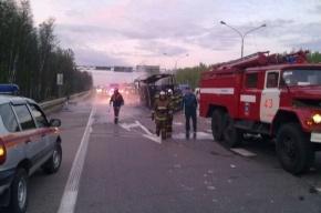 Страшное ДТП в Подмосковье: погибли 11 человек