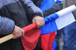 На Московском проспекте поймали мужчин, воровавших флаги