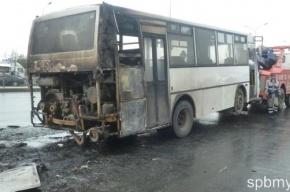 В Купчино сгорел автобус