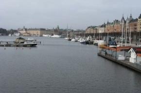 С 31 мая по 10 июня в Петербурге пройдут Дни Швеции