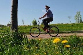 Участковые в Купчино пересели на велосипеды
