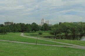 В парке Авиаторов чуть не произошло массовое побоище