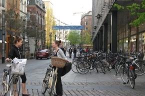 Другая планета Дания -2 или почему молодежь идет в фермеры и любит ТВ