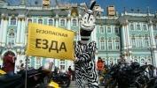 Зебры помогали пешеходам на Дворцовой площади: Фоторепортаж