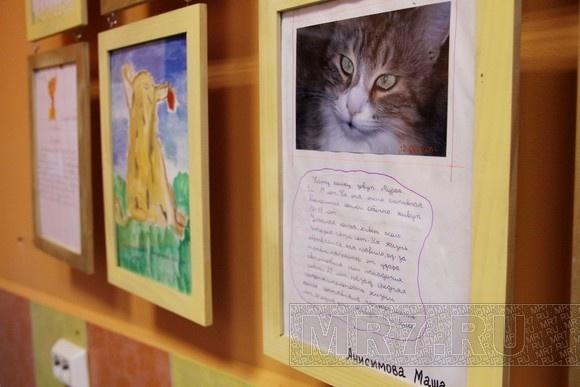 Чиновники, ученые и ветеринары обсудили проблемы животных: Фото