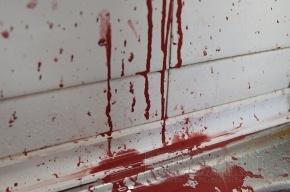 В Невском районе мужчина убил жену и спящего ребенка