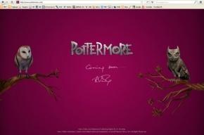 Любители Гарри Поттера готовятся вступить в новую игру