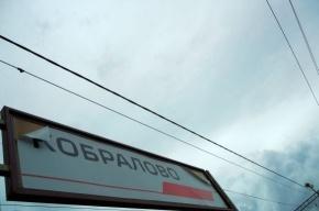Драка в Кобралово: жители не верят в помощь властей