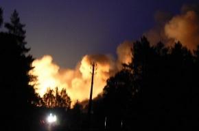 Взрывы на военных складах в Удмуртии: уже 78 пострадавших