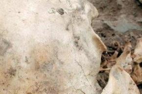 В Чили опровергают основную версию смерти Сальвадора Альенде