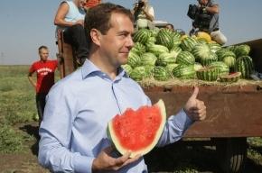 Медведев: Нужно отменить уголовное наказание за клевету и оскорбление