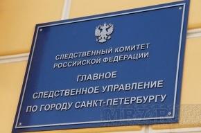 В Петербурге выпал из окна четырехлетний ребенок