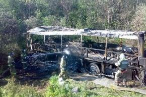 На трассе «Балтия» ночью сгорел автобус: семь погибших