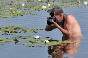Фотолюбителям предложили показать один день из жизни Петербурга