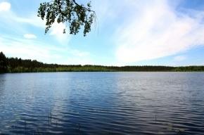В Парголово утонула 12-летняя девочка