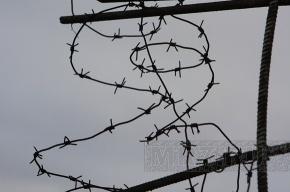 В Металлострое задержали подозреваемого в педофилии