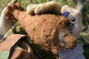 В Пушкинском районе нашли девять минометных мин