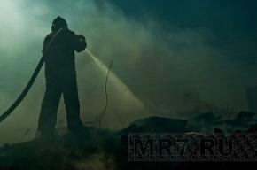 Пожар на полигоне «Красный Бор» потушили