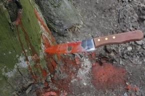 В Кировском районе на детской площадке нашли труп