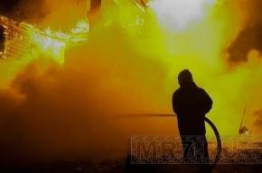 Под Петербургом горит свалка токсичных отходов