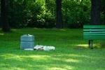 Фоторепортаж: «Удельный парк был бы Гайд-парком, если бы не мы»