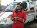 Спасатели о найденном питоне: Хотим отдать змейку в руки специалистов: Фоторепортаж