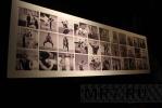 В Петербурге открылась выставка, посвященная Диане Вишневой: Фоторепортаж