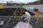Горожан пустят на лужайку Новой Голландии: Фоторепортаж